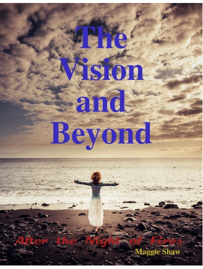 The Vision and Beyond (Paperback) product image